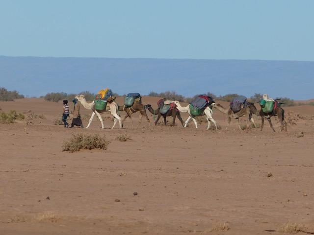 dunes du Chgaga